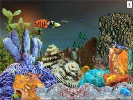 Download live fish aquarium software: ornamental fish aquarium.